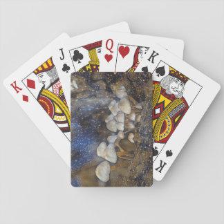 Jogo De Baralho Cogumelos mágicos