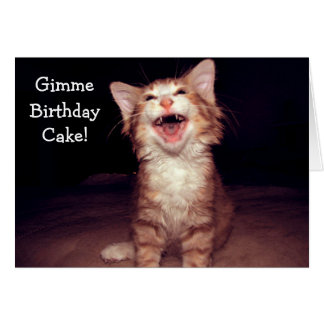 Kitten wants Cake - funny Birthday Card Cartão Comemorativo