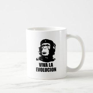 La Evolucion de Viva Canecas