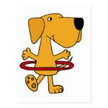 Labrador retriever amarelo engraçado que joga a cartoes postais