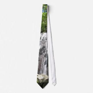 Laço Dressy da cachoeira Gravata