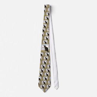 Laço, gato de chita gravata