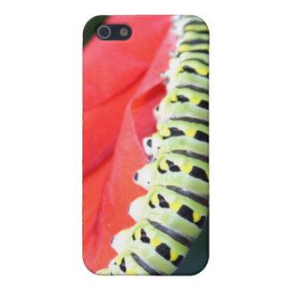lagarta capas iPhone 5
