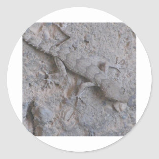 lagarto adesivo