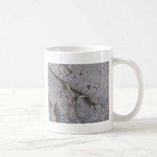 lagarto caneca