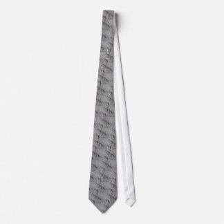lagarto gravata