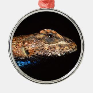 lagarto ornamento redondo cor prata