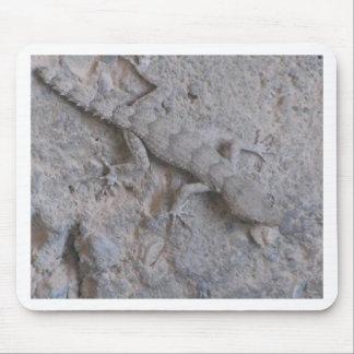 lagarto mouse pads