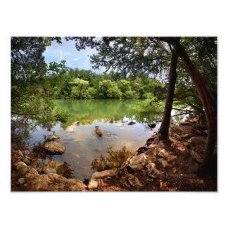 Lago 2 ladybird da natação do cão - Austin Texas Impressão De Foto