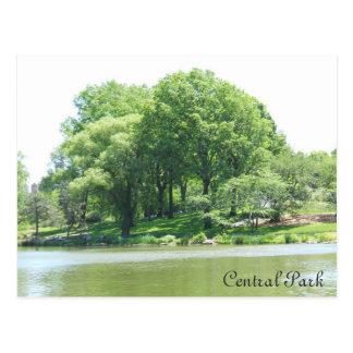 Lago e árvores central Park Cartão Postal