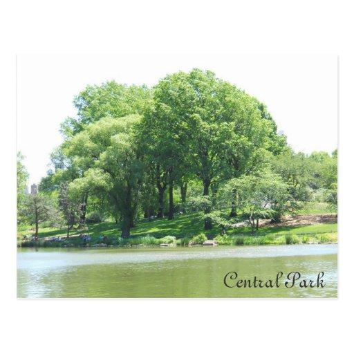 Lago e árvores central Park Cartao Postal