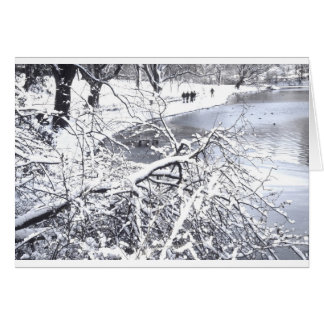 Lago winter do Central Park Cartão Comemorativo