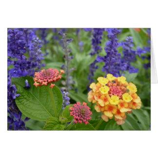 Lantana & cartão de nota das flores de Salvia