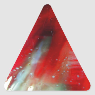 Lavagem de carros II Adesivo Triangular