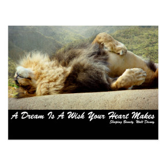 Leão do jardim zoológico que sonha de um cartão da