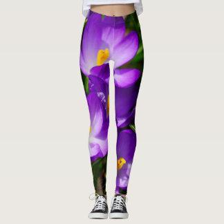 Legging Açafrões do Lilac
