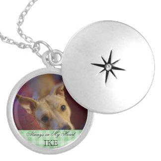 Lembrança memorável da foto do animal de estimação colar banhado a prata