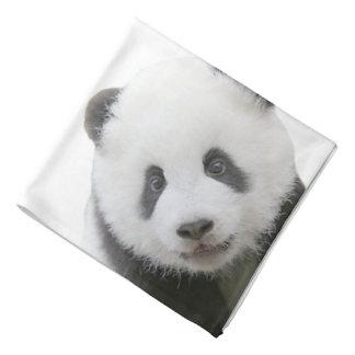 Lenço Cara da panda
