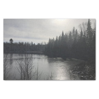 Lenço de papel da paisagem de Michigan