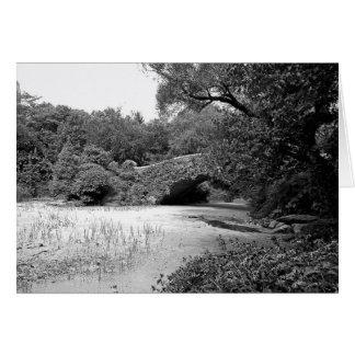 Lentilha-d'água - Central Park Cartão Comemorativo