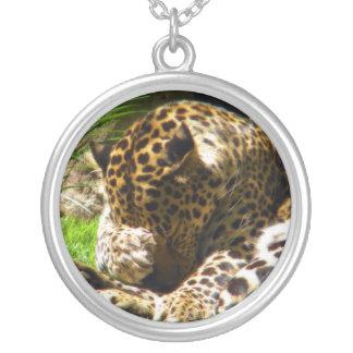 Leopardo tímido colar banhado a prata
