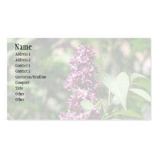 Lilac doce cartão de visita