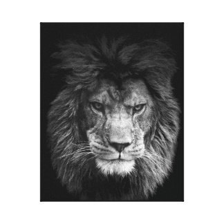 Lion poster leão linho BLACK
