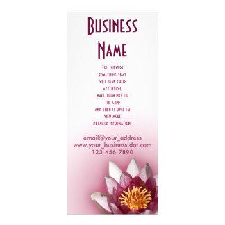 Lírio de água cor-de-rosa panfleto informativo