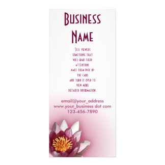 Lírio de água cor-de-rosa panfleto informativo personalizado