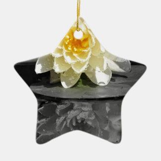 Lírio de água ornamento de cerâmica estrela