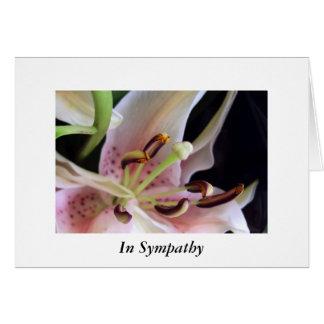Lírio rosa pálido cartão comemorativo