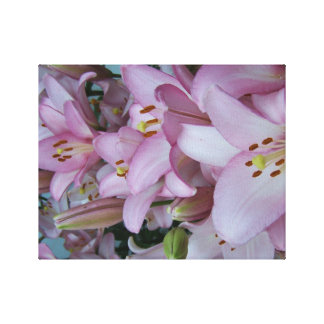 Lírios gigantes cor-de-rosa