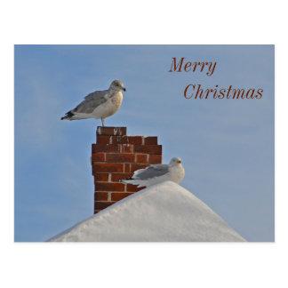 Litoral do Feliz Natal Cartão Postal