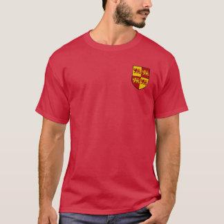 Llywelyn a grande camisa da brasão