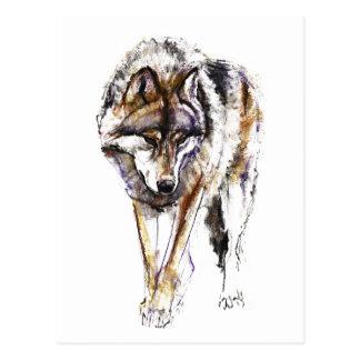 Lobo europeu cartão postal