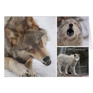 Lobos - cartão - vazio para dentro