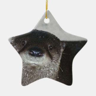 Lontra de rio norte-americana ornamento de cerâmica estrela