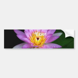 Lotus Adesivos