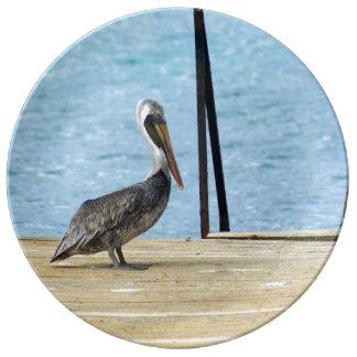 Louça Pelicano no cais, Curaçau, caribe, porcelana