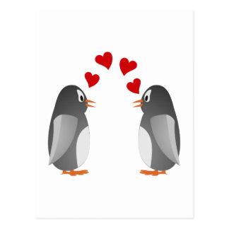 love namorou pinguins penguins cartão postal