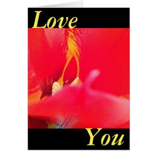 Love You Cartão Comemorativo