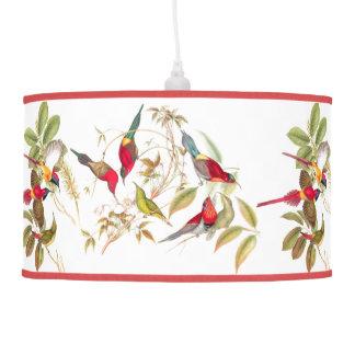 Luminária De Teto Animais dos animais selvagens dos pássaros de