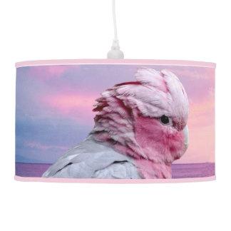 Luminária De Teto Cockatoo de Galah