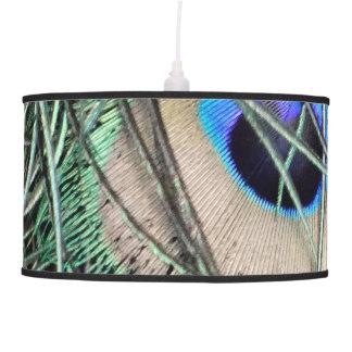 Luminária De Teto Olho para um Peafowl