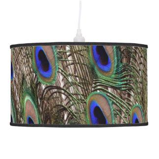 Luminária De Teto Penas de cauda naturais do pavão com olhos azuis