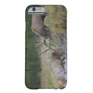Luta de touros dos alces, Yellowstone NP, Wyoming Capa Barely There Para iPhone 6