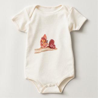 Macacãozinho Para Bebê Mão lisa que mostra o rim humano modelo