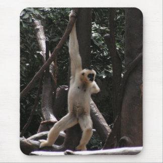 Macaco engraçado mouse pad