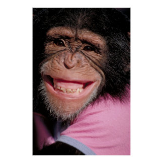 Macaco engraçado impressão