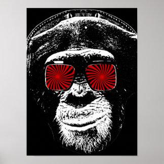 Macaco engraçado poster